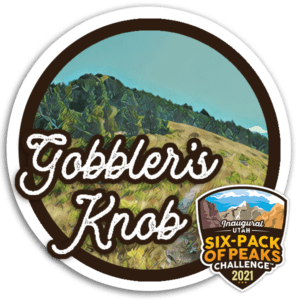 2021 Gobbler's Knob