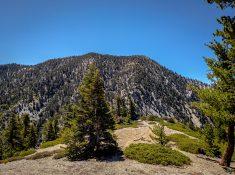 Bighorn-Cucamonga-Peak-25
