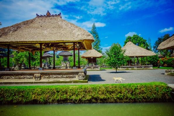 Bali19150417