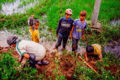 Vietnam - SouthJune 19, 2015-11