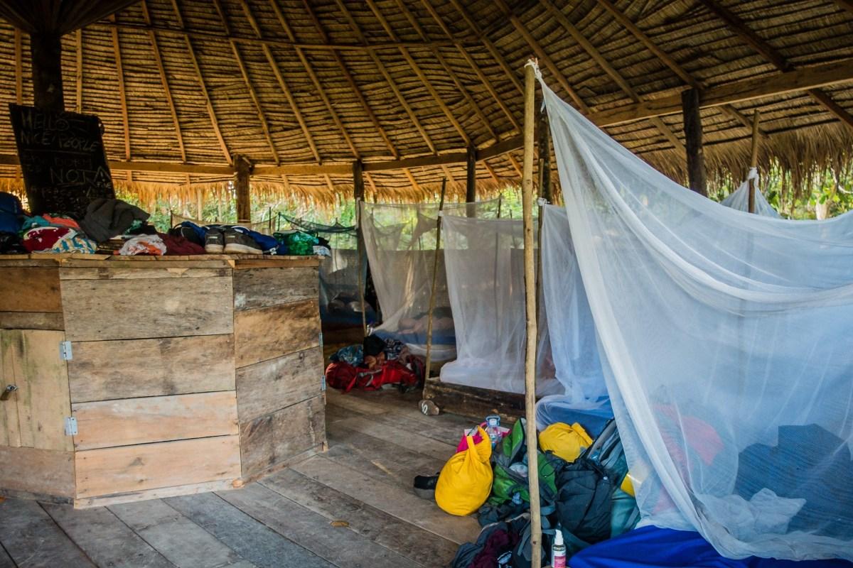 Jungle hostel cambodia