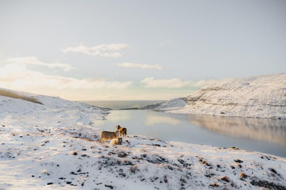 reis foto Faroer eilanden