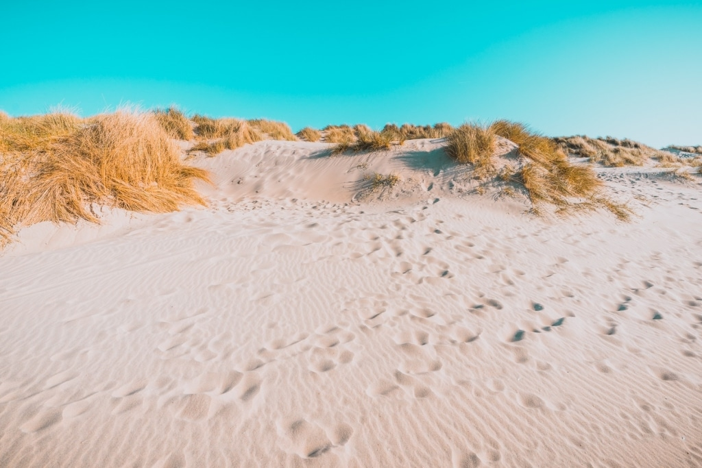 duinen van Bredene wandelen aan het strand