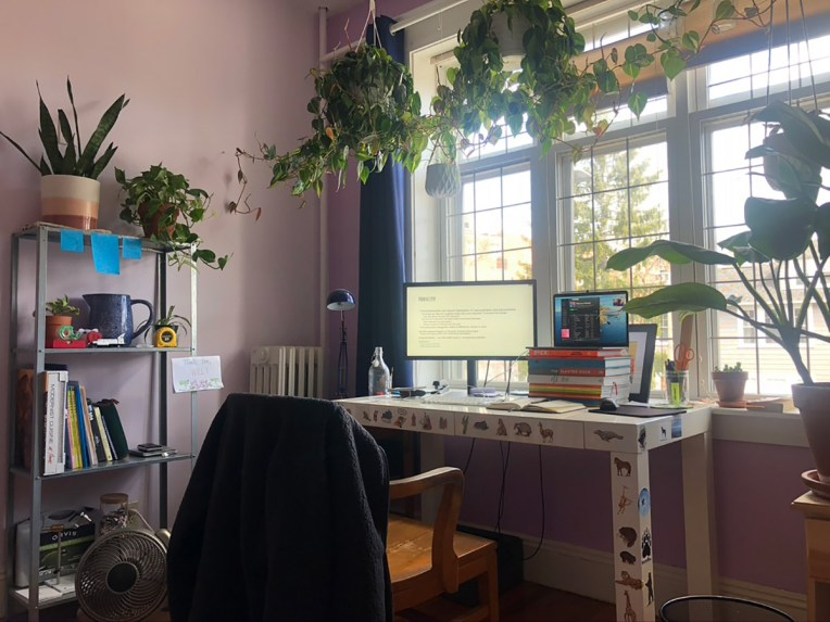 Glamour shot of someone's home study room filled with lush plants big and small, a bookshelf, and a desk covered in dinosaur stickers.