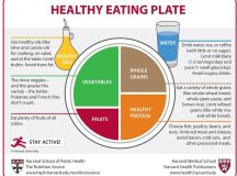 Food Pyramids and Plates: What Should You Really Eat ...