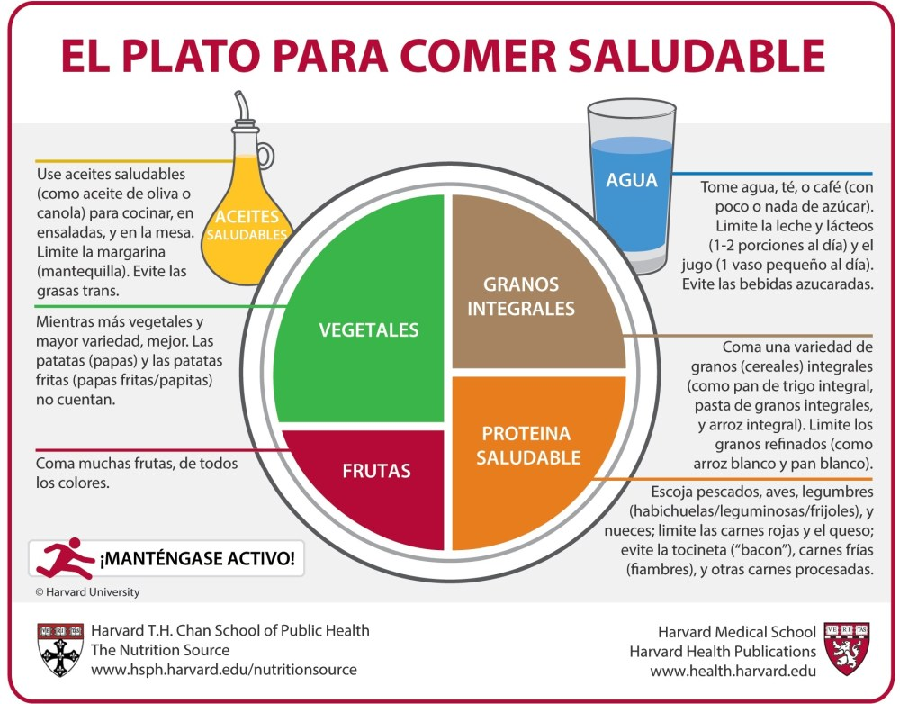 medium resolution of el plato para comer saludable spanish