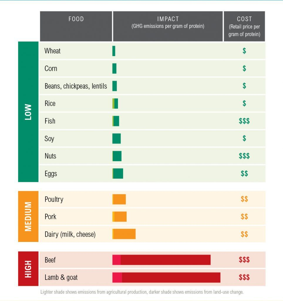 hight resolution of protein scorecard