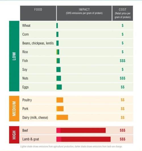 small resolution of protein scorecard
