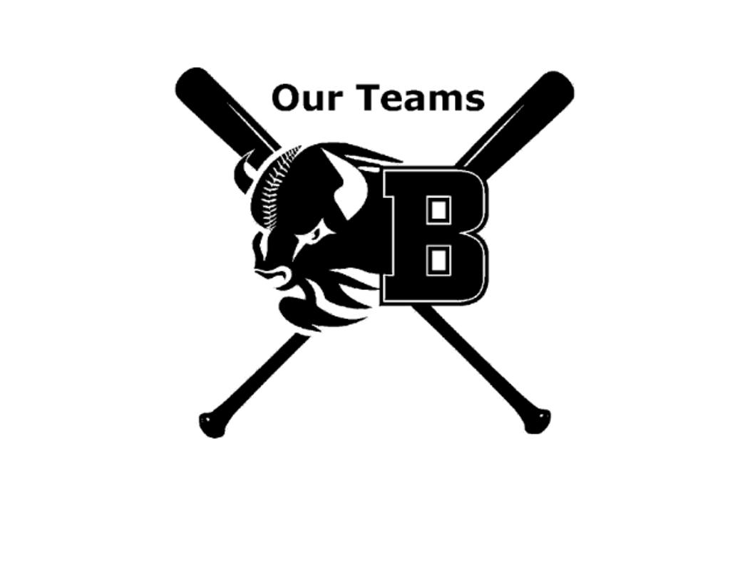 Brockport Bisons Baseball