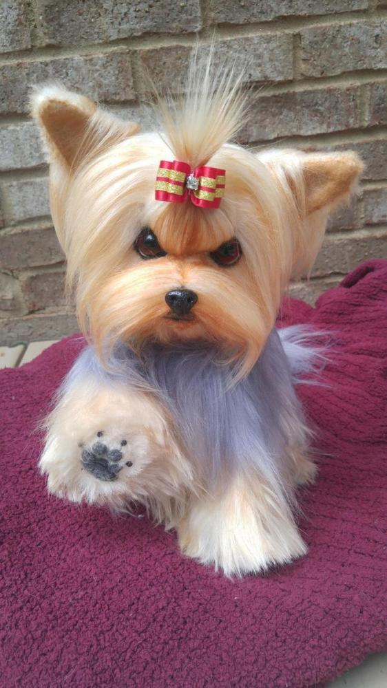 14 Life Size Yorkie Yorkshire Terrier Puppy Dog By Brigitte Crowe Handmade Teddy Bears For Sale On Tedsby