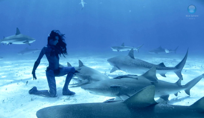 Lets Get Weird Woman Dances With Tiger Sharks  The Inertia