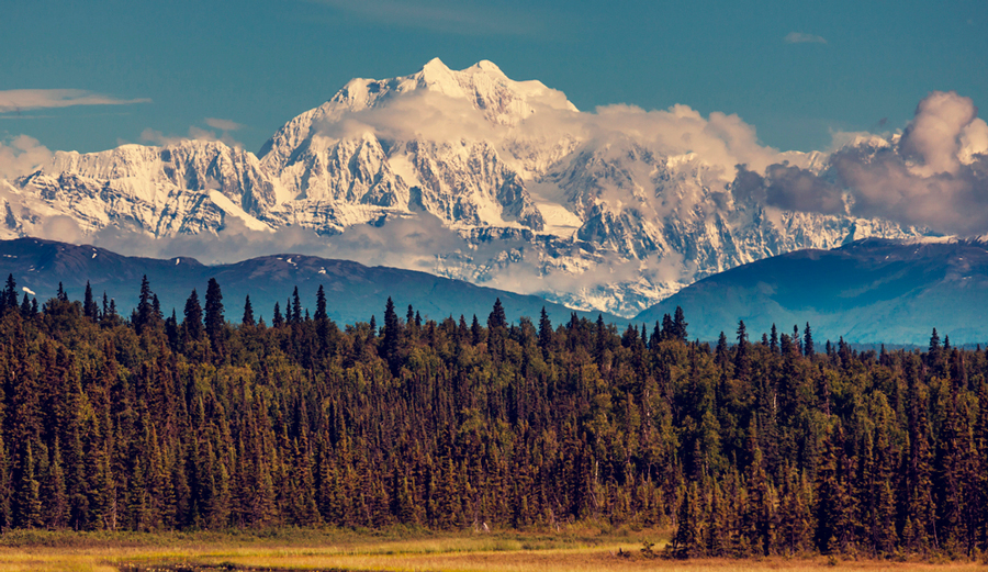 Denali Restored as Official Name of Mount McKinley  The Inertia