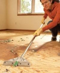 Staple Carpet Padding  Floor Matttroy