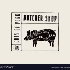 Pig Cuts Diagram Bones Of The Skull Anterior View Stock Pork Royalty Free Vector Image