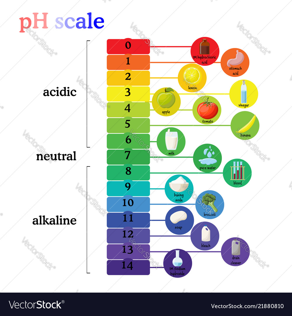 medium resolution of ph scale diagram