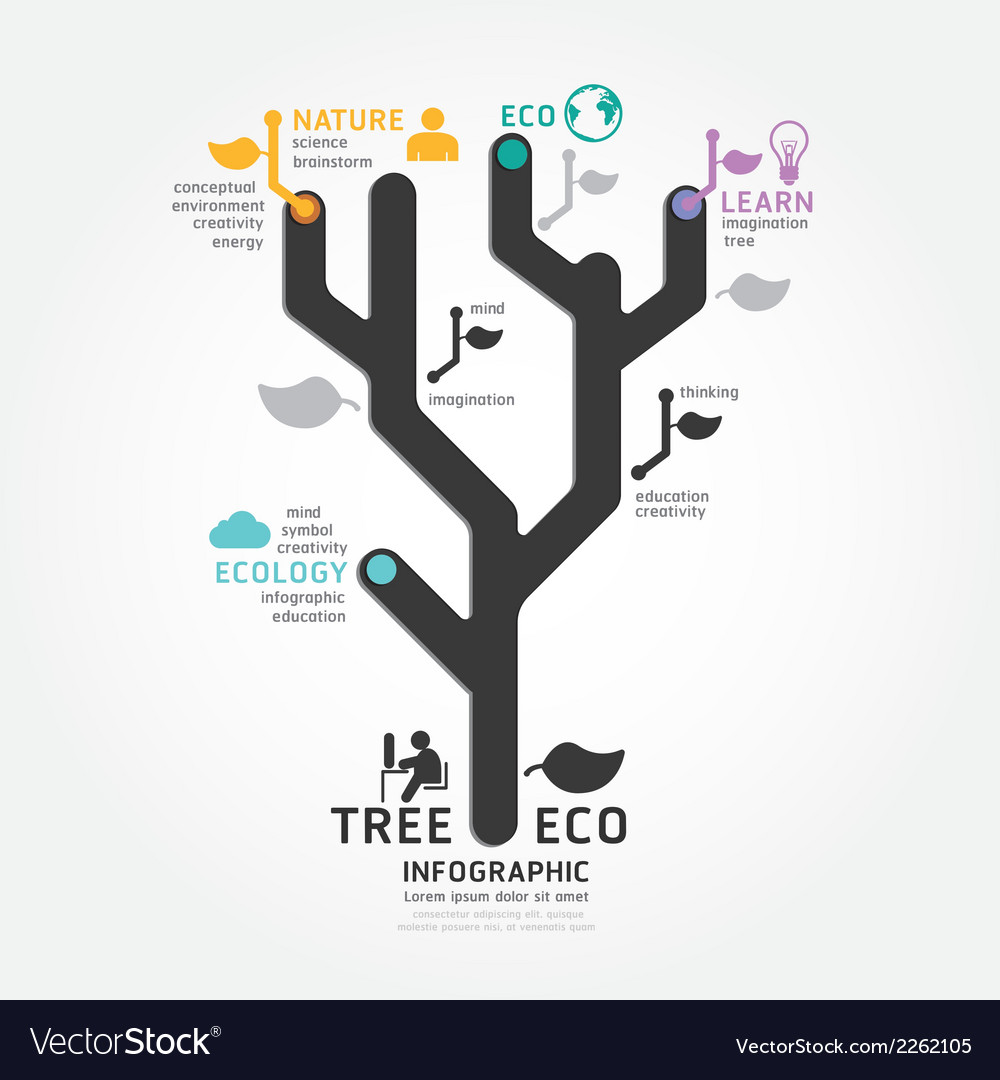 hight resolution of infographics tree design diagram line style templa vector image