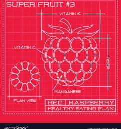 diagram of raspberry [ 947 x 1080 Pixel ]