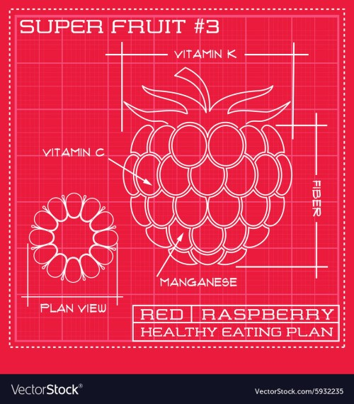 small resolution of diagram of raspberry