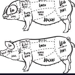 Pig Cuts Diagram 2003 Corolla Fuse Box Pork And Butchery Set Royalty Free Vector Image