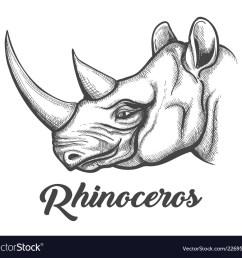 rhino head diagram [ 1000 x 927 Pixel ]