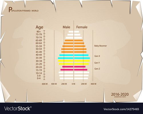 small resolution of 2016 2020 population pyramids graphs with 4 genera vector image