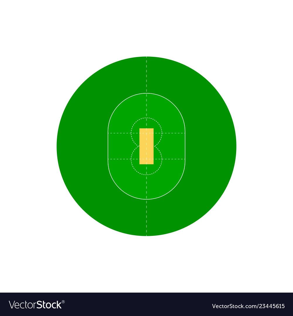 hight resolution of cricket field vector image