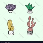 Cute Hand Hand Draw Cactus And Succulent Doodle Vector Image
