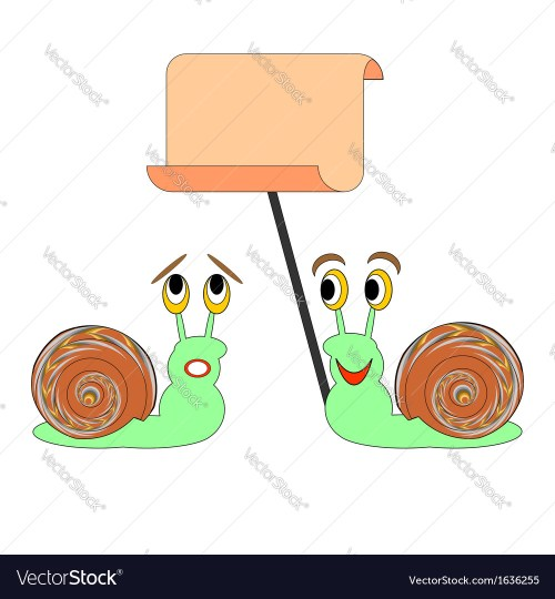 small resolution of blank snail diagram