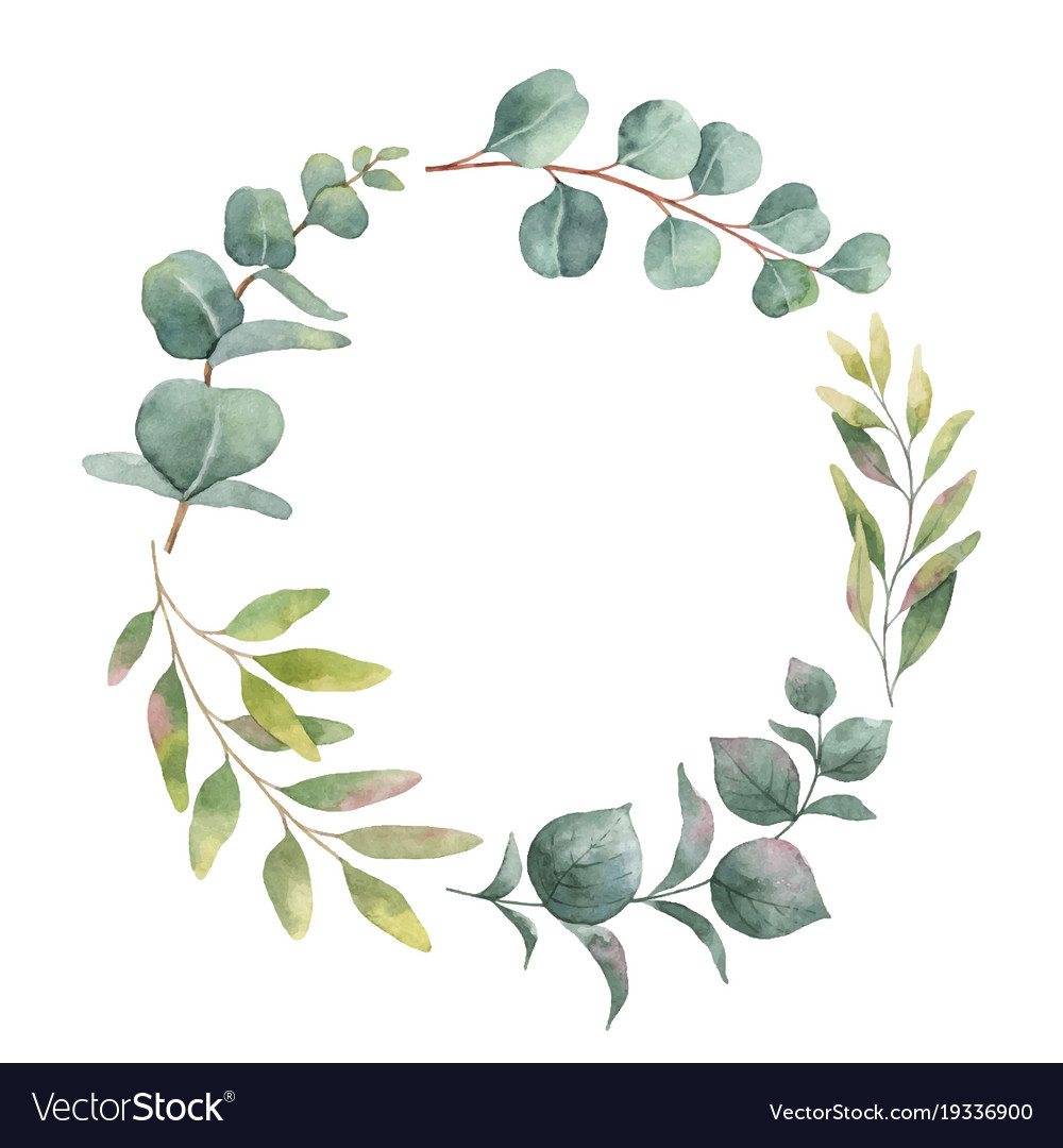 Watercolor wreath with green eucalyptus Royalty Free Vector