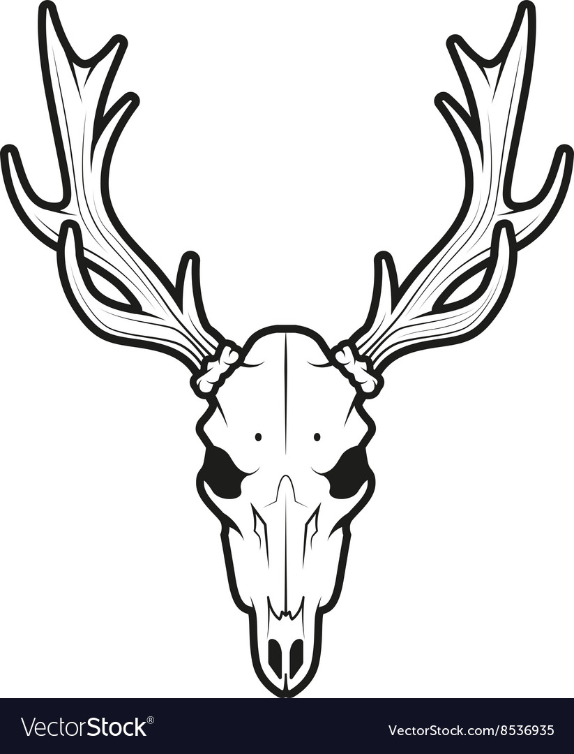Deer Skull Stock Illustrations, Cliparts And Royalty Free