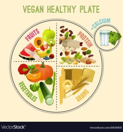 healthy eating plate vector image [ 1000 x 1026 Pixel ]