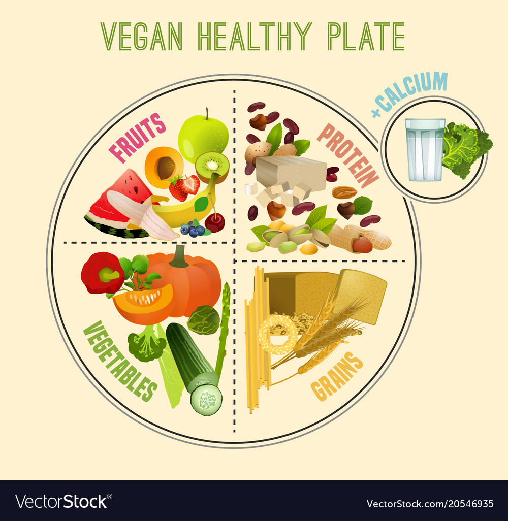 medium resolution of healthy eating plate vector image