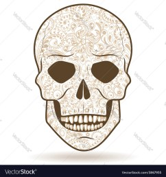 tiger tooth skull diagram [ 1000 x 1080 Pixel ]