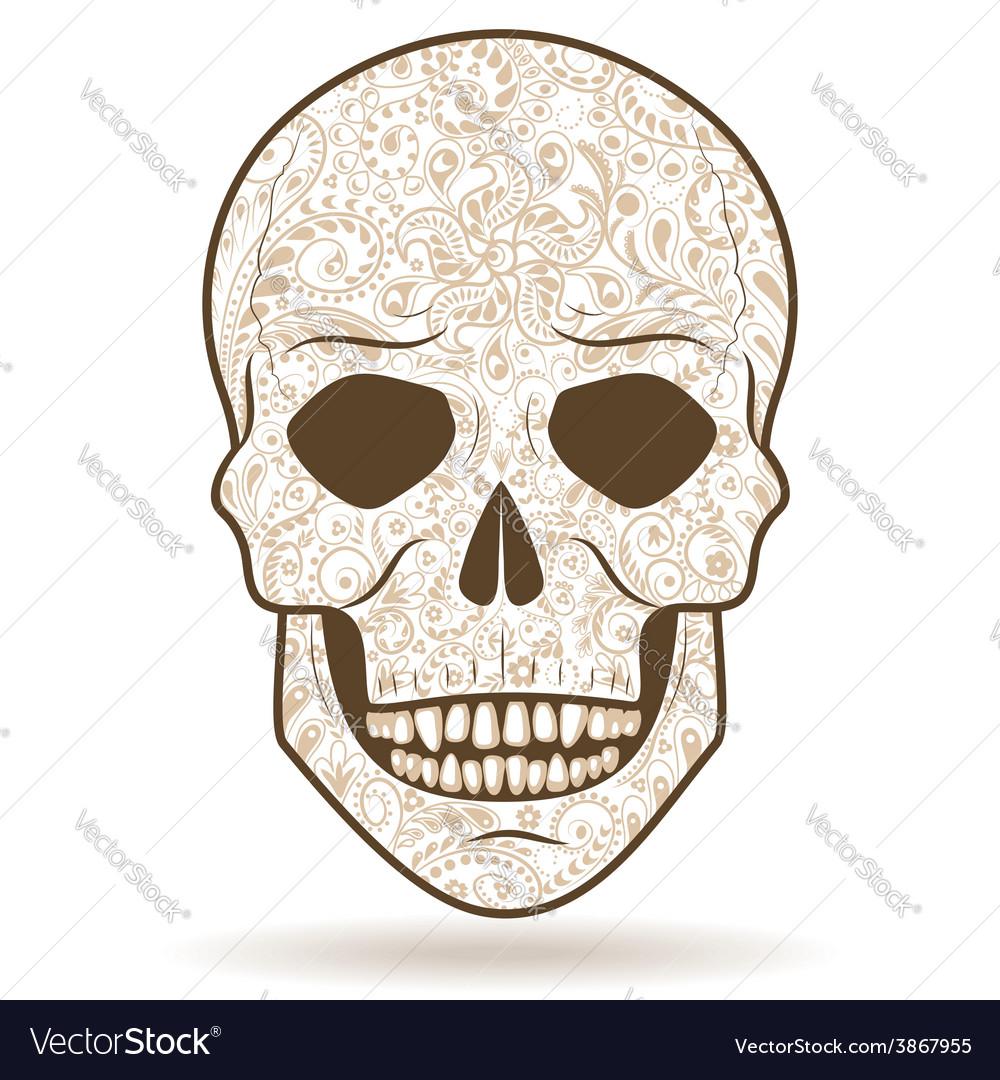 medium resolution of tiger tooth skull diagram