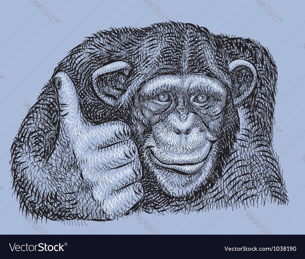 chimpanzee drawing