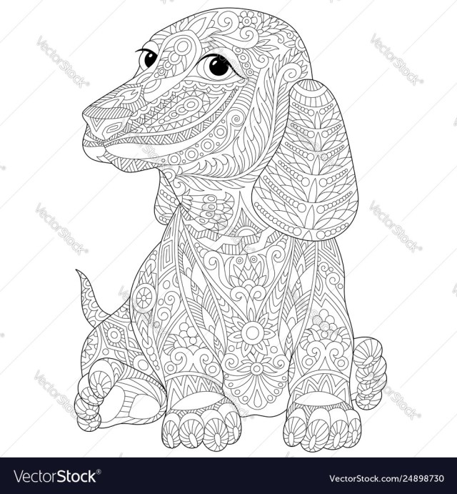 Dachshund dog adult coloring page Royalty Free Vector Image