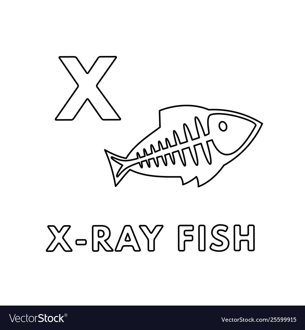 hight resolution of ray fish diagram label