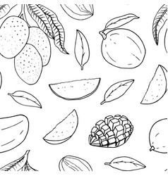 Mango Outline Vector Images over 650