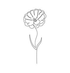 Aesthetic Minimalist Simple Flower Drawing Fundo Madeira