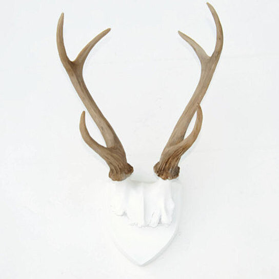 european kitchen gadgets appliance set buy faux deer antlers - white plaque with natural ...