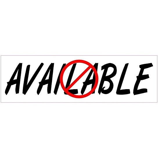 Buy 10x3 Not Available Funny Vinyl Bumper Sticker Decal
