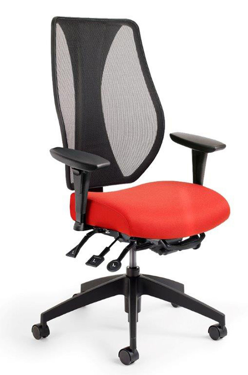Back Supports For Chairs Tcentric Hybrid Mesh Back Task Chair By Ergocentric