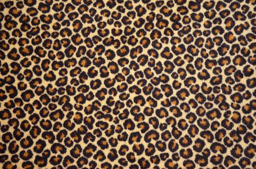 Dean 5 x 7 Leopard Print Area Rug