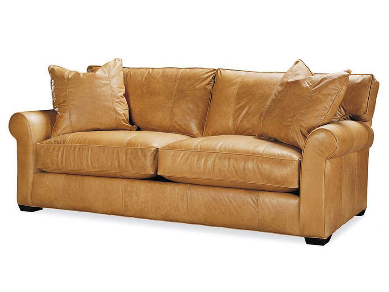 Jessie Leather Queen Sleeper Leather Sleeper Sofas Sofa