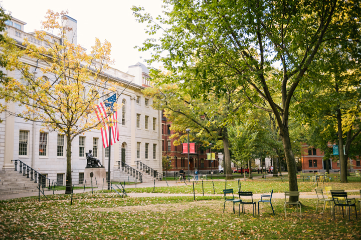 Pretty Fall Wallpapers Harvard Campus Wood Sources Harvard College Trees Old