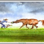 The Joys Of Spring Funny Horse Cards Jude Too Lesley Bruce Bon Vivant Unique Equestrian Supply Accessories