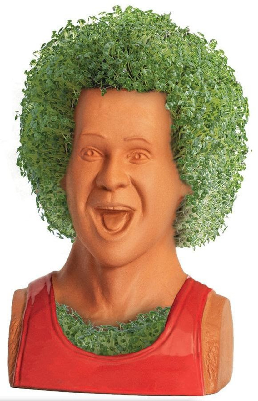 Chia Pet Images : images, Richard, Simmons, ToyWiz