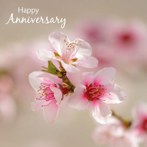 sm14111a peach blossom 1