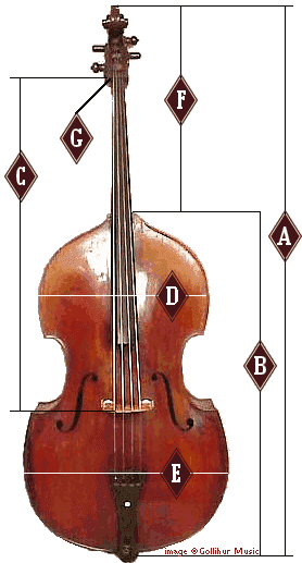 Double Bass Strings Notes : double, strings, notes, Double, Sizing