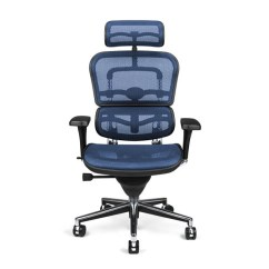 Ergonomic Chair Description Hanging Manufacturers Raynor Ergohuman Me7erg Mesh With Headrest Sleek Black Matches Nearly Any Office Style